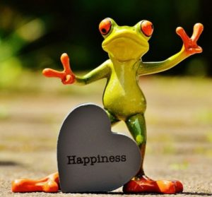 happiness-frog